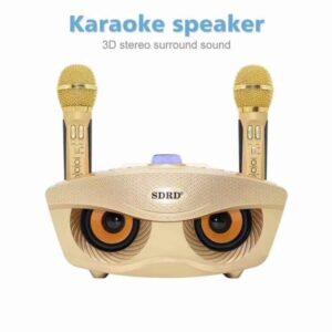 pazari4all.gr-Ασύρματο καραόκε με 2 μικρόφωνα SDRD SD-306