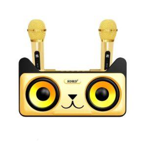 Ασύρματο Καραόκε Γάτα με 2 μικρόφωνα SDRD SD-305 (Χρυσό)