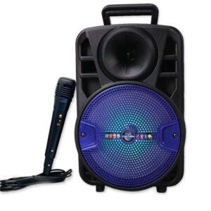 pazari4all-Επαναφορτιζόμενο ηχείο Bluetooth 8 ιντσώνCH-812 με καλώδιο μικροφώνου